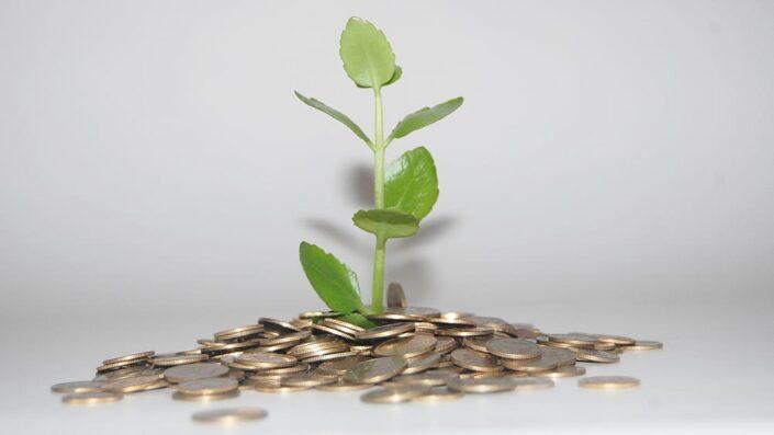 Denaro e crescita spirituale