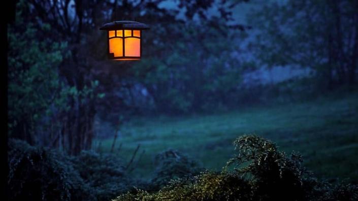 Shamain la notte di Ognissanti